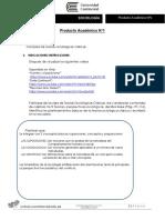 Enunciado Producto académico N°1 (8)