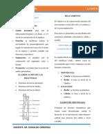 1. Fracturas antebrazo y brazo parte 1 (1)