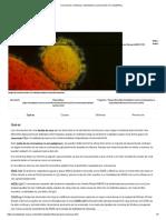 Coronavirus_ prevención