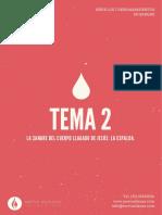 SERIE-7-DERRAMAMIENTOS-DE-LA-SANGRE-TEMA-2