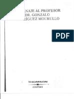 IMPUTACION OBJETIVA - REYES (A).pdf