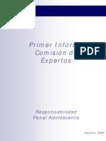 Primer Informe Comision de Expertos en RPA