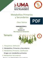 Farmacobotánica_S12_Metabolitos primarios y secundarios