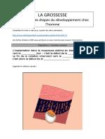 LA GROSSESSE.pdf