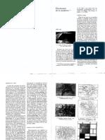 Diccionario desde La Trama De Lo Moderno.pdf