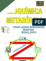 Presentacion_Metabolismo_Y_dieta_ppt_UNAD