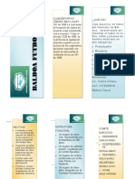 folleto comicion nacion del deporte (2)