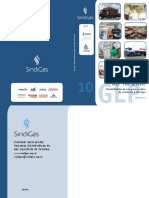 NOVA_Cartilha_Sindigas_10_sem ibp.pdf