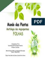 Apresentacao_Folhas.pdf