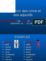 7_le_fminin_des_noms_et_des_adjectifs_p.p..ppt