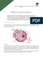 machete_6.pdf