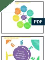 Evidencia Mapa conceptual Tipos societarios + Zoom