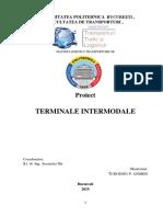 Proiect Ti.pdf