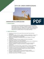 ELECTRICISTA DE LINEAS ENERGIZADAS