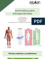 Anatomía básica para antropometristas