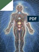 Atributos Mensuraveis da Tecnica do Estado Vibracional - Nanci Trivellato