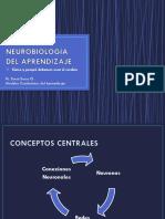 NEUROBIOLOGÍA DEL APRENDIZAJE ULTIMA CLASE MODELOS CONDUCTISTAS DEL APRENDIZAJE