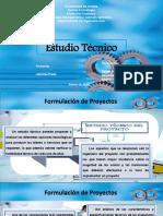 formulacion diapositivas