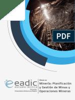 Master-Mineria-Planificacion-Gestion-Minas.pdf