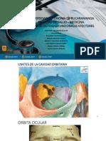 Practica-Orbita-ocular-2020-01-Med (1).pdf