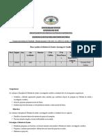 PLANO DE MEIC 2020-1.docx
