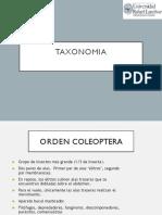 Taxonomia 05 - 2020.pdf
