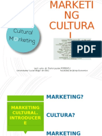 Marketing cultural. Produsul cultural
