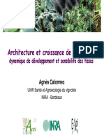 03_dev_architecture_sensibilite_Calonnec_22nov2012.pdf