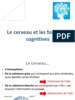 cerveau_et_fonctions_cognitives_neuropsy_