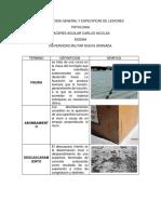TERMINOLOGIA GENERAL Y ESPECIFICAS DE LESIONES