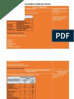 7_MI DE  PROGRAMA  DE FORMACION CONTIENE.docx