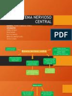 SISTEMA NERVIOSO CENTRAL EMBRIOLOGIA 2