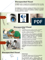 La Discapacidad Visual