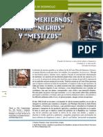 AÑORVE_Los afromexicanos entre negros y mestizos