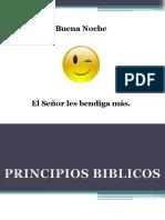 ENSEÑANZA PRINCIPIOS BIBLICOS.pdf