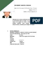 CV JELSIN GARCIA.docx