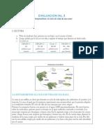 diagnostica_Inicial.pdf