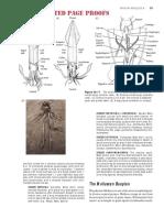 The Molluscan Bauplan.pdf