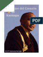 Consejos del Corazón de Karmapa-El 17 Gyalwang Karmapa