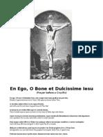 Prayer Before a Crucifix