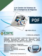 PDF-GESTIÓN-INFORMACION-E-INT-NEGOCIOS-2015