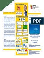899TRIPTICO_CURSO_AUTOMATIZACION_2.pdf