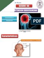 Diapositivas_Clase_06__Hiperensión_endocraneana