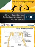 Osteologia_artrologia_Bloco E