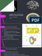 2020 MICOLOGIA.pdf