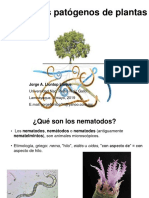 Nematodos. Mayo 2019.pdf