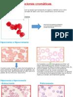 Variaciones cromáticas.pptx