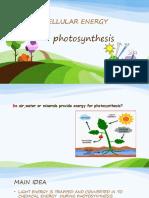 photosynthesis.pptx