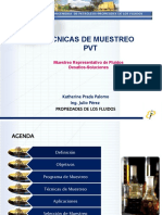 67287332-Tecnicas-de-Muestreo-PVT.pptx