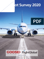 GOOSE-the-pilot-survey-2020